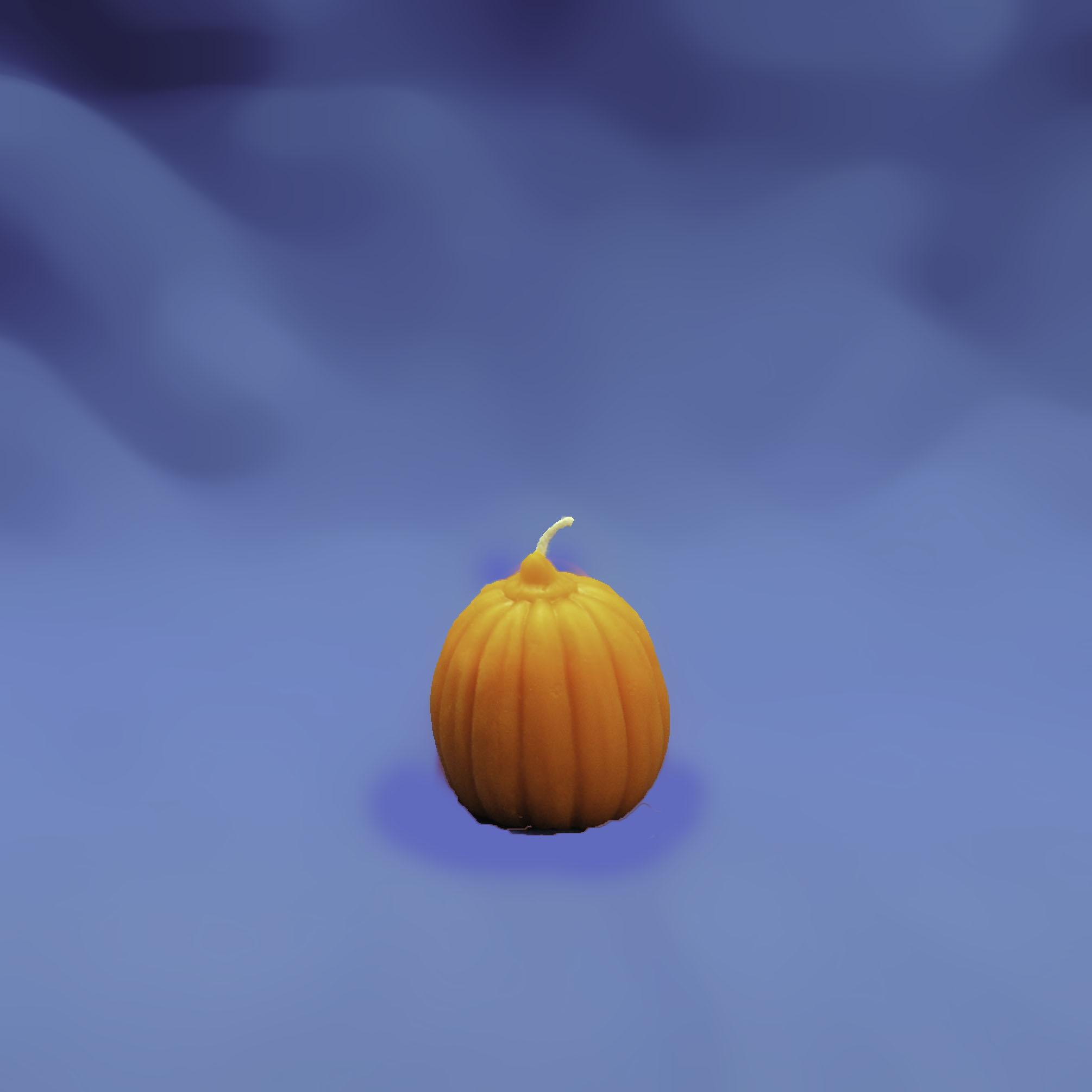 Beeswax Pumpkin Candle