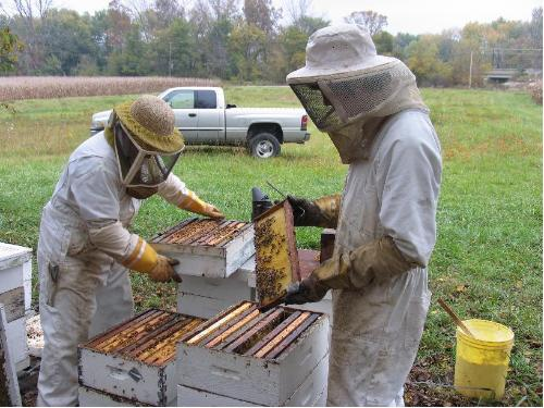 Beehive Tour – (Seasonal, Reservations Required)