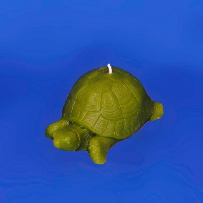 204-LARGE-GREEN-TURTLE